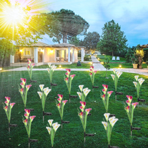 flower lights outdoor