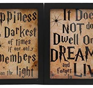 "8"" x 10"" Happiness Can Be Found in the Darkest of Times Wood Motivational Framed Wall Art with Inspirational Quotes and Sayings - Vintage Wall Decor for Home Office - Set of 2"