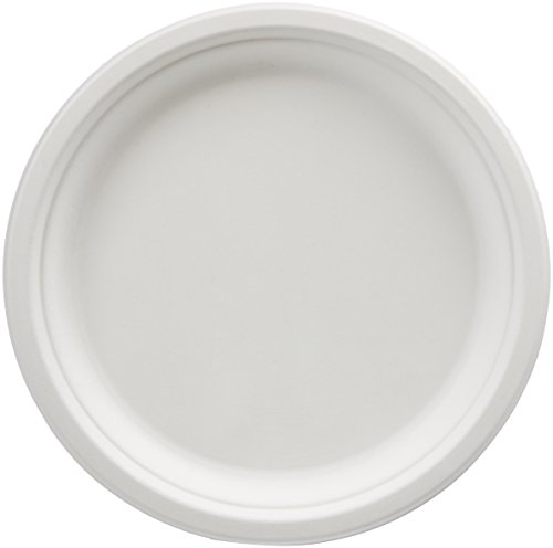 AmazonBasics Compostable Plates, 10-Inch, Pack of 500