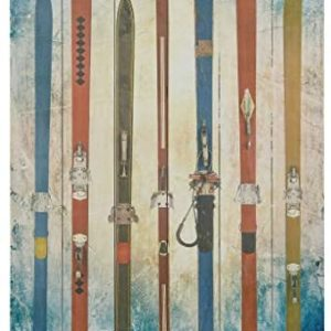 """Empire Art Direct """"Retro Skis"""" Fine Art Giclee Printed on Solid Fir Planks Graphic Wall Art"""