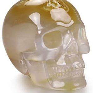 "Skullis 2.0"" Agate Crystal Skull, Hand Carved Gemstone Fine Art Sculpture, Reiki Healing Stone Statue.2"