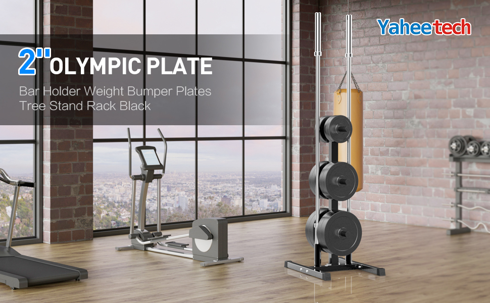 2'' Olympic Plate & Bar Holder Weight Bumper Plates Tree Stand Rack