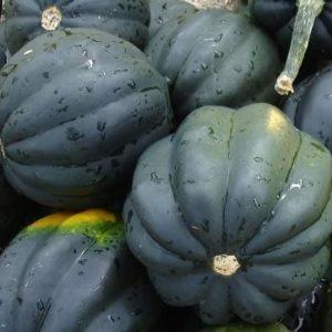 Squash Seeds- Table Queen Acorn- Heirloom- 40+ Seeds